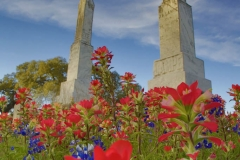 Historic central-Texas cemetery with Indian Paintbrush