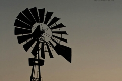 South Texas rancher on windmill