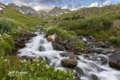 Flowing water and wildflowers, San Juan Mountains