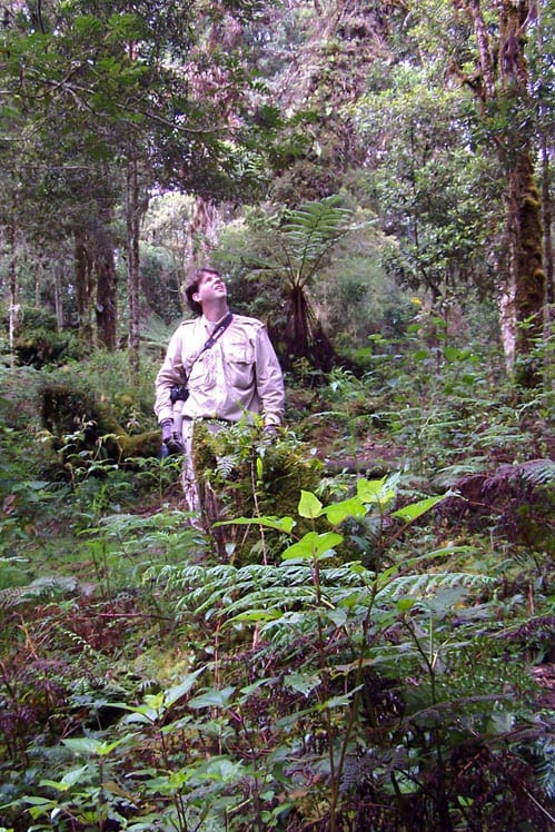 Jeff Parker in cloud forest, Costa Rica