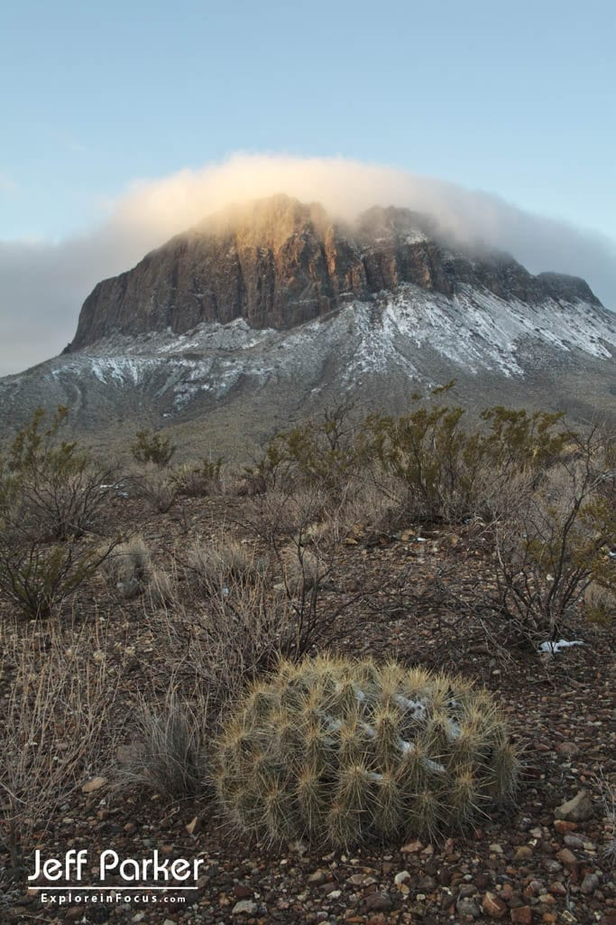 Big bend for nature photographers photo tour with Jeff Parker