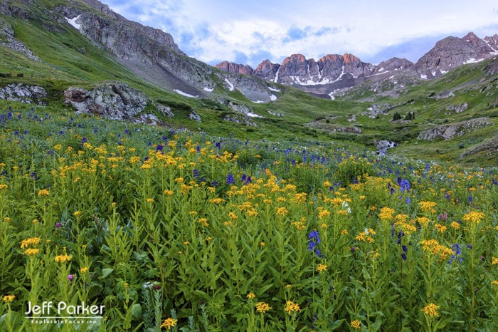 This Colorado Mountain Landscapes and Wildflowers Photo Tour 2020 focuses on capturing beautiful landscape images of the stunning wildflower-filled basins of the San Juan Mountains. Landscape Photography Workshops in Colorado