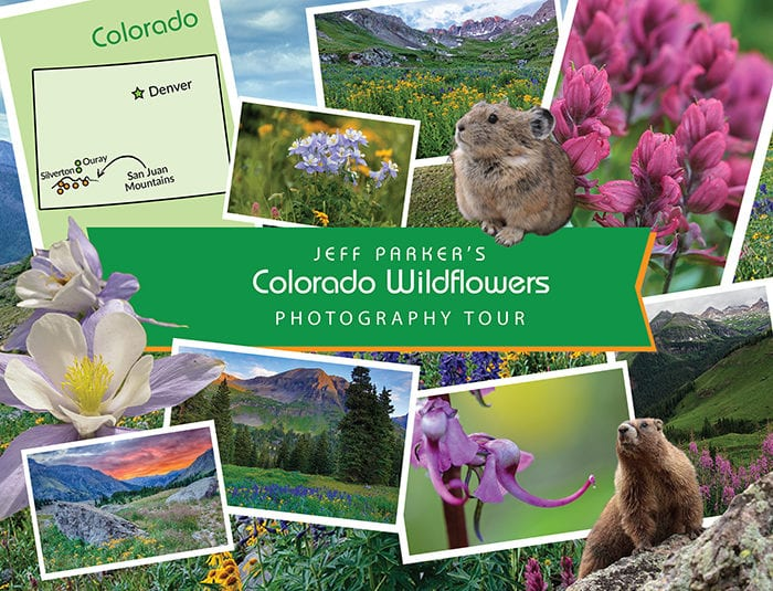 This Colorado Mountain Landscapes and Wildflowers Photo Tour 2020 focuses on capturing beautiful landscape images of the stunning wildflower-filled basins of the San Juan Mountains.