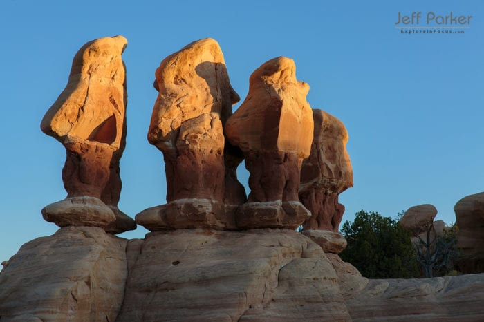 his Utah Landscapes and Night Skies Photo Tour 2020 focuses on the red rock landscapes and super dark skies of the Grand Staircase-Escalante National Monument and surrounding areas.