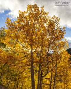 This Colorado Aspen Photo Tour ~ 2020 focuses on capturing beautiful landscape images of the stunning fall color in the San Juan Mountains.